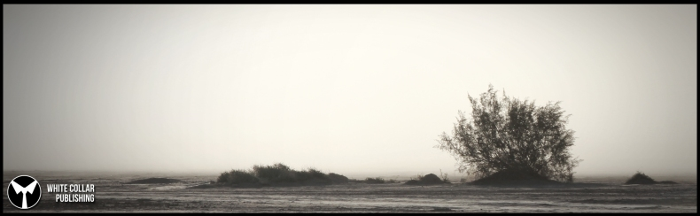 lakebed 2